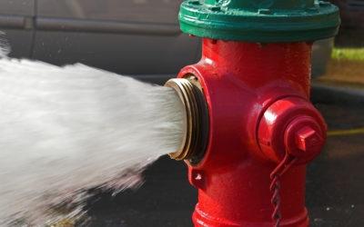Płukanie sieci wodociągowej hydrantami przeciwpożarowymi (Nowy Staw, Laski, Tralewo, Kościeleczki)